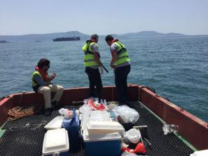 Deniz Suyu Kimyasal ve Biyolojik Analizleri